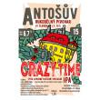 Crazy Times IPA 15° (1,0 l PET)