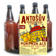 PUMPKIN ALE 13° (1,0 l PET)
