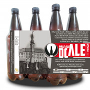 DC Ale 11° (1l PET)