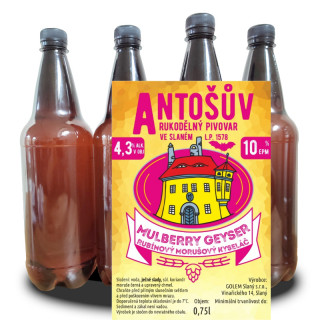 Acid Beer MULBERRY GEYSER 10° (1l PET)